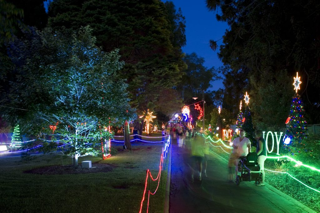 Toowoomba's Christmas Wonderland in Queens Park, Saturday, December 01, 2012. Photo Kevin Farmer / The Chronicle