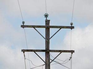 Creature behind power outage on the Fraser Coast