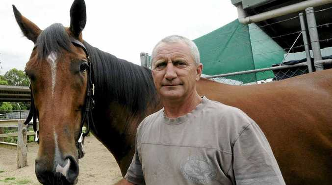 TARGETING BALLINA: Lismore trainer Peter Youngberry, pictured with When My Baby, will be hoping for success at the Ballina meeting tomorrow.