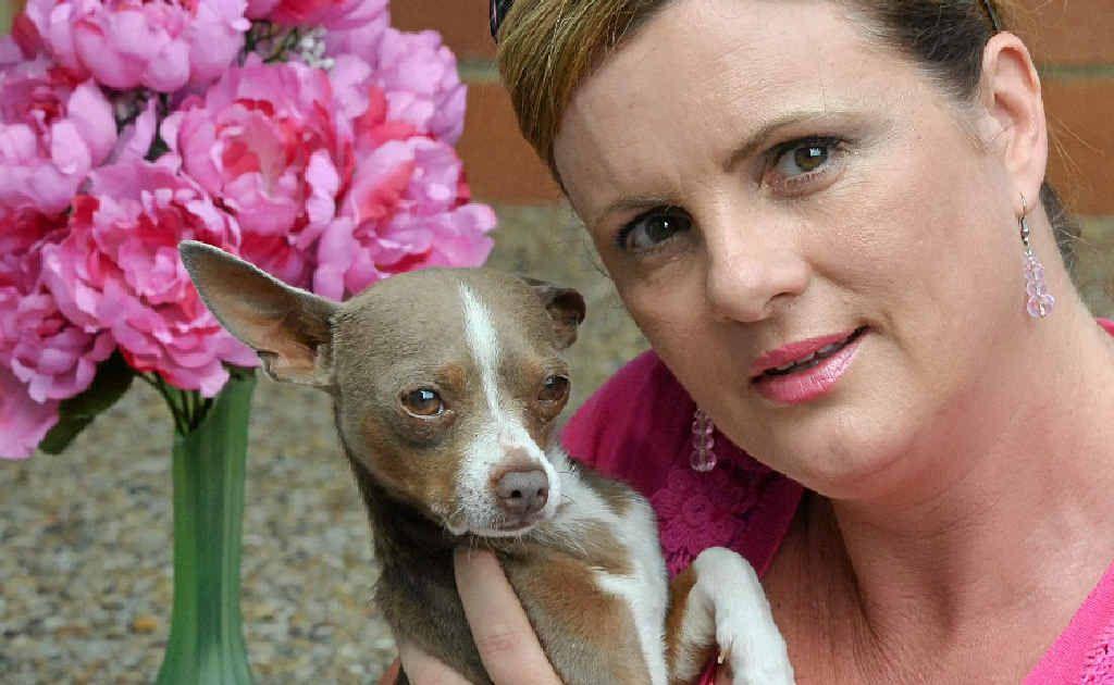 Maryanne Milne at 4Paws animal refuge with Stuart Little.