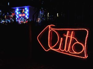 Ditto says it all in cheeky Christmas lights display