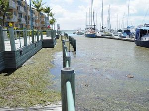 Fraser Coast residents encouraged to photograph king tide