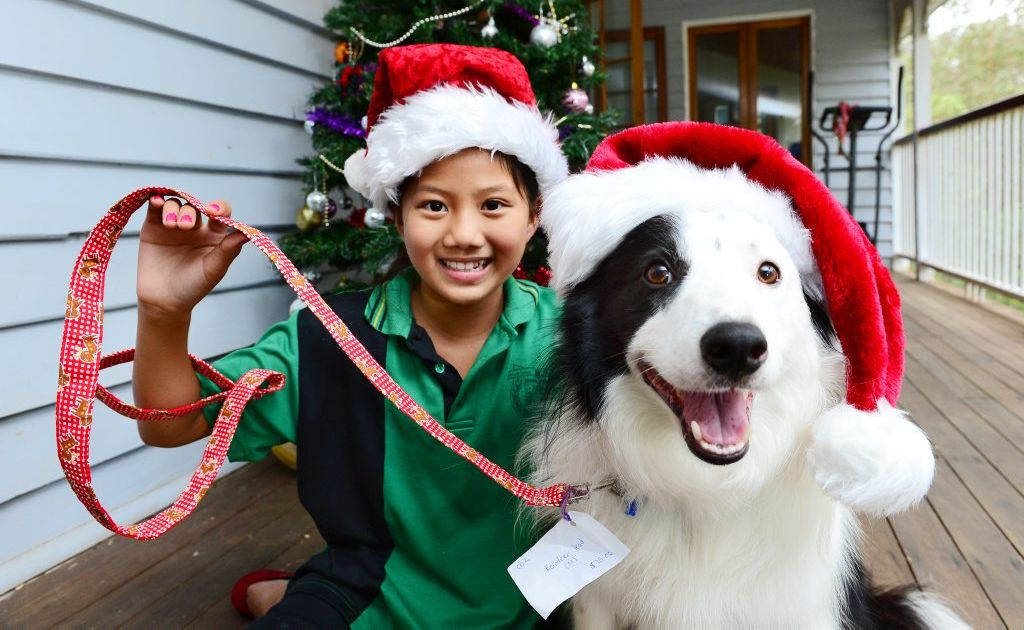 Ten-year-old Tulip Todd of Mt Crosby pictured with her dog Buzz has been making homemade pet collars and leads called Tu Tu's Bling.
