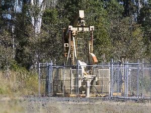 Industry: Four cows produce same methane as CSG wells