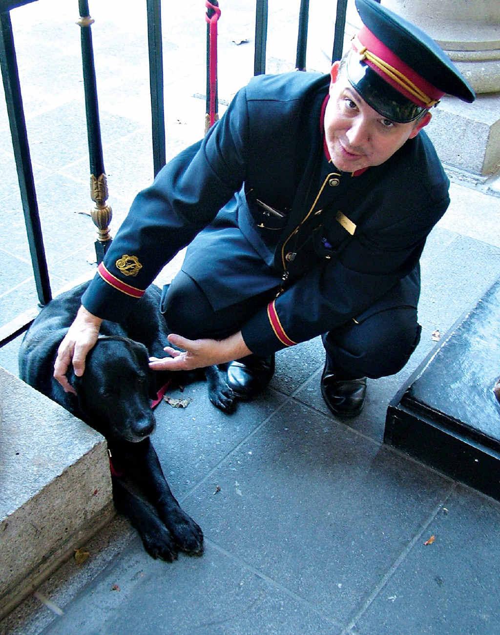 Catie, this Boston hotel's canine concierge.