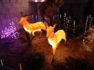 Turn on lights for Christmas
