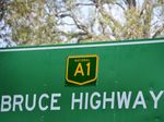 Flat tyre on dangerous section of Bruce Highway: Opinion