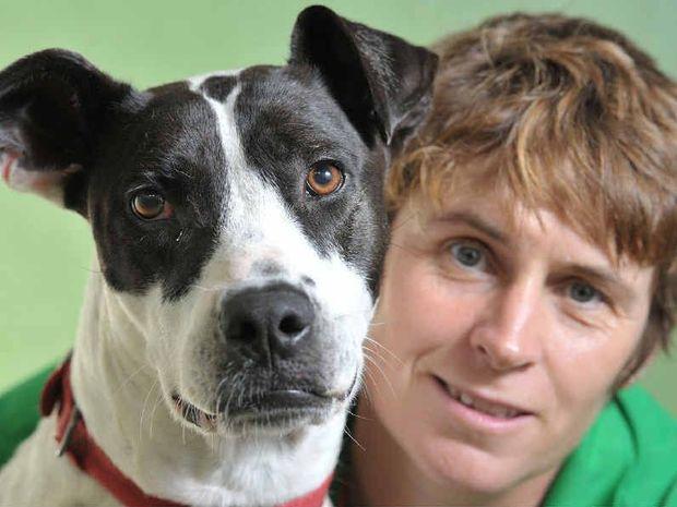 Wacol RSPCA senior animal attendent Hayley Kennington with Daphne the dog.