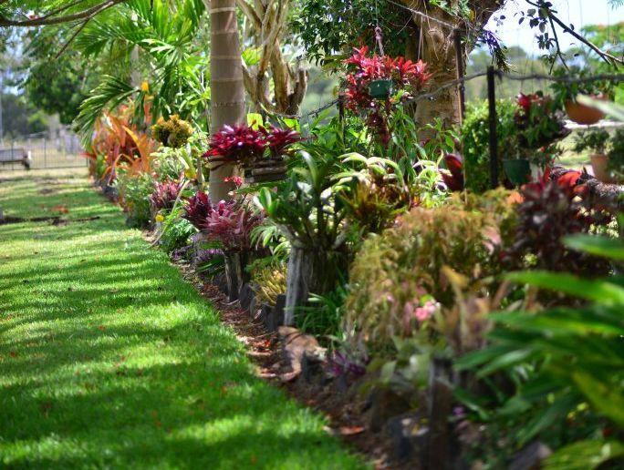 Using fertiliser will give your garden a noticeable lift.