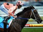 Queen of the track Black Caviar retires unbeaten