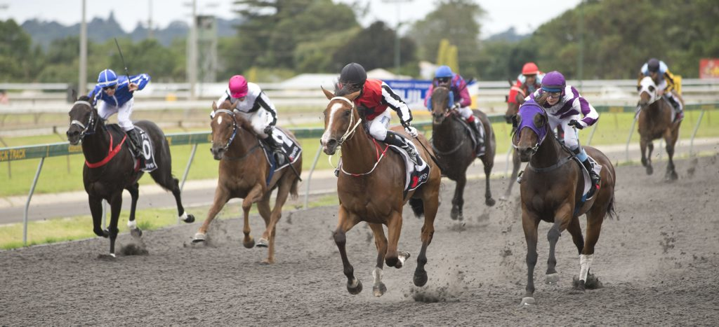 Angelina (centre) and jockey Nozi Tomizawa headed for victory at Clifford Park yesterday.