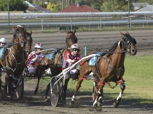 Toowoomba TAB harness racing back on the pace