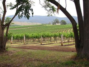 Embrace expense for a romantic break in the Hunter Valley