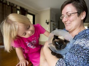 Kindness of strangers saves family's pet cat