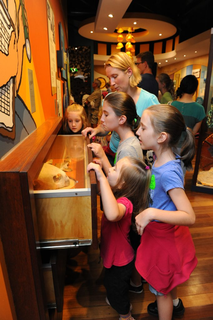 TURTLE FUN: Mon Repos offers a wide range of family activities to keep adults and kids entertained.