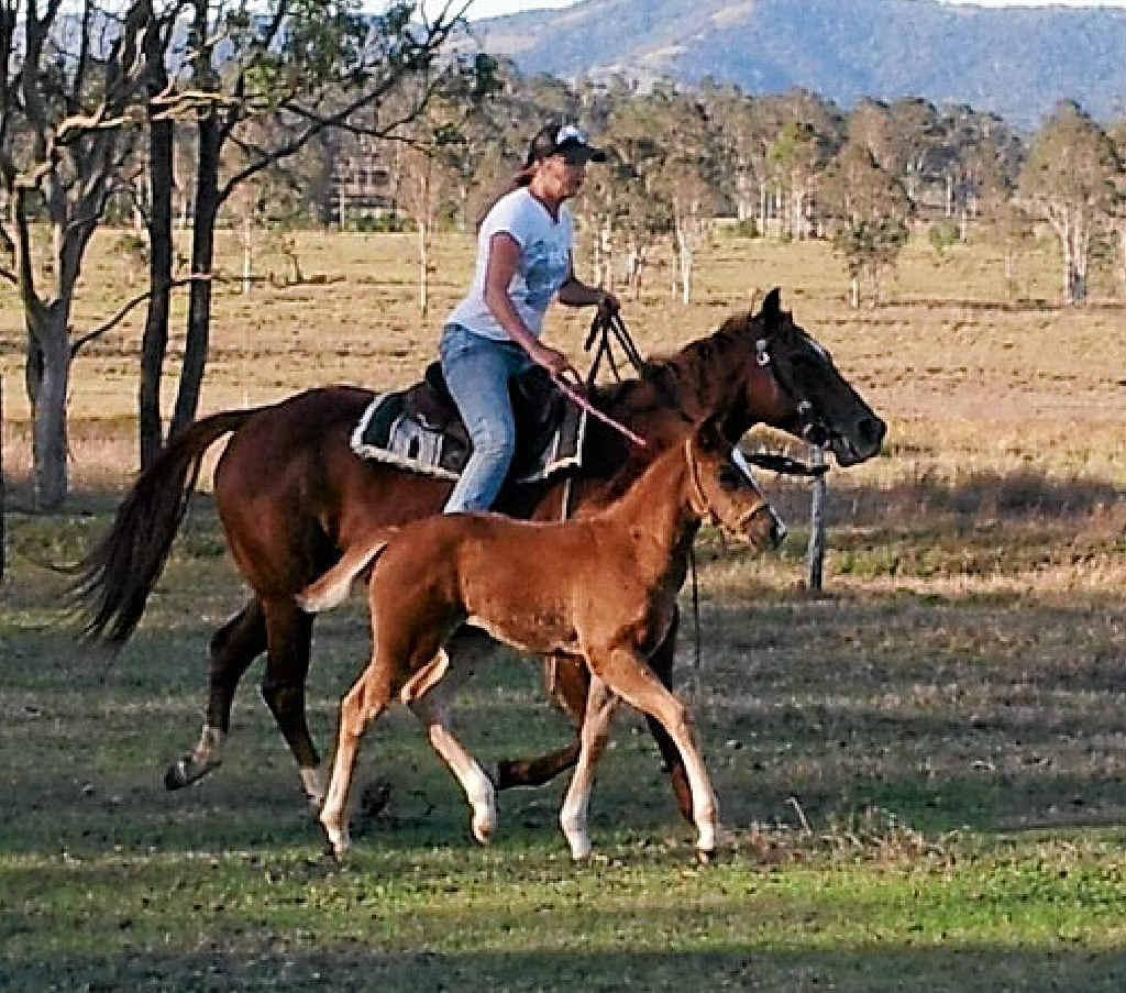 Louise Louden already has foal Ruby following her barrel racing mother' Zena's footsteps.