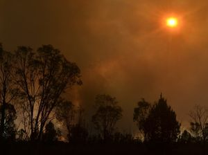 Al Gore says global warming will worsen bushfires