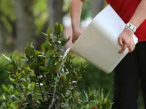 Richmond Valley Council lifts water restrictions after rains