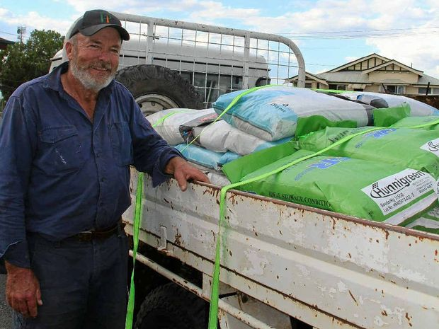 Cattle producer Norm Tranberg stocked up on sorghum seed and fertiliser yesterday at Olsen's Produce.
