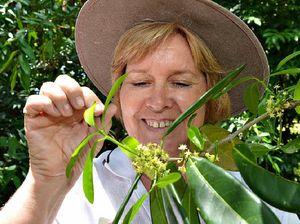 Nurture an interest in city's botanic gardens