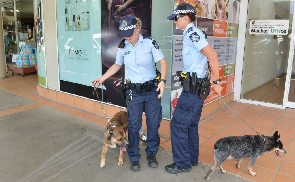 Two dogs left in the back of a ute parked on Sydney Street were rescued by police officers. Photo Lee Constable / Daily Mercury