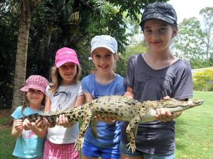 Reptile park provides memorable experience