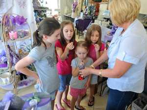 Lavender steals the show at Bargara farm and gift shop