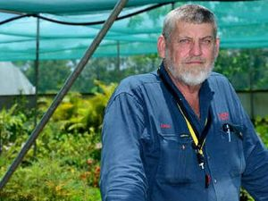 Bypass will kill Rockhampton nursery owner's livelihood