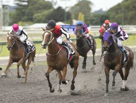 Clifford Park will temporarily share Sunday meeting with Dalby and Gatton later this year.