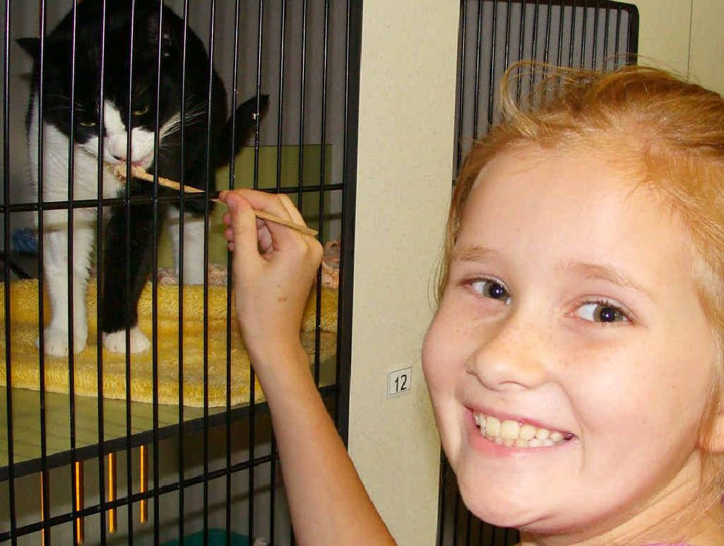 HANDS-ON: Youngsters can get hands-on experience of caring for animals.