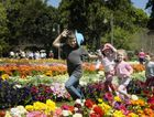 Families flocked to last year&squot;s Toowoomba Carnival of Flowers.