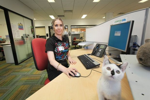 Sally Carroll is one of very few and in demand volunteers that work the phones at the RSPCA Wacol. Photo: Inga Williams / The Satellite