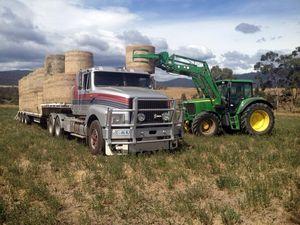 Tassie Trucking Scotty Williams. Photo Jon Wallis / Big Rigs
