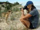 Jennifer Parkhurst once photographed dingoes on Fraser Island but has not been back since her court case.