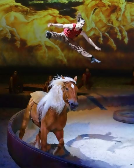 A scene from the live show Cavalia: A Magical Encounter Between Human and Horse.