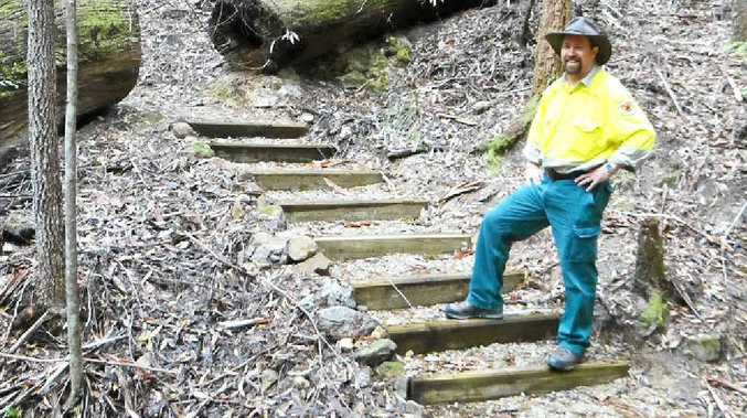 STEPPING UP: National Parks and Wildlife Service (NPWS) ranger Brian McLachlan at the Minyon Falls walking track.