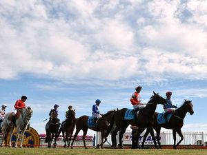 Trainer Robbie Laing confident his lord will reign