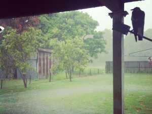 Reader contributed rain photos