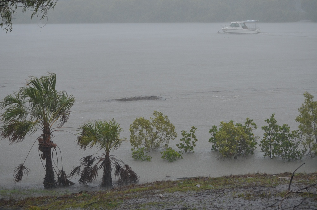 By 12.45pm the Boyne Island river had gone down to the same level as the 2011 flood, but there is still heavy rain, strong winds and a lot of debris floating down the river.