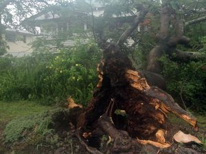 Disaster situation now declared on the Fraser Coast