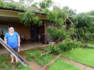 Big tree damages city unit