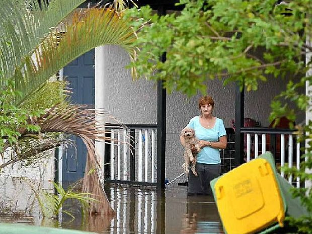 Megan Stewart returned to her flooded home in Ashford Rd to take care of her dogs and cats.