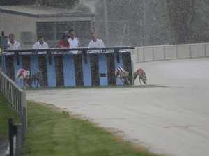 Weather plays havoc with greyhound calendar