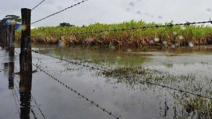 Farmers are still waiting to here about Category C funding for the Clarence Valley.