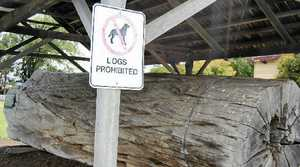 WORD PLAY: What's prohibited? The log or the dog?