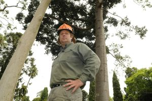 Arborist Todd Grimley encourages residents to check on their large trees after last week&squot;s rain.