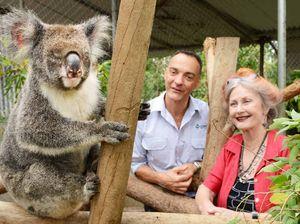 Lorraine jumps for joy as koalas get protection plan