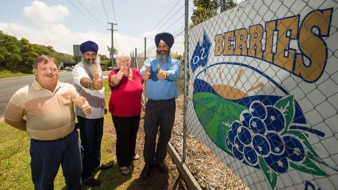 From left: John Stewart, John Arkan, Pamela Fayle and Kamaldeep Singh Clair announce that OzBerries is the new major sponsor of Curryfest. Photo: Trevor Veale / Coffs Coast Advocate