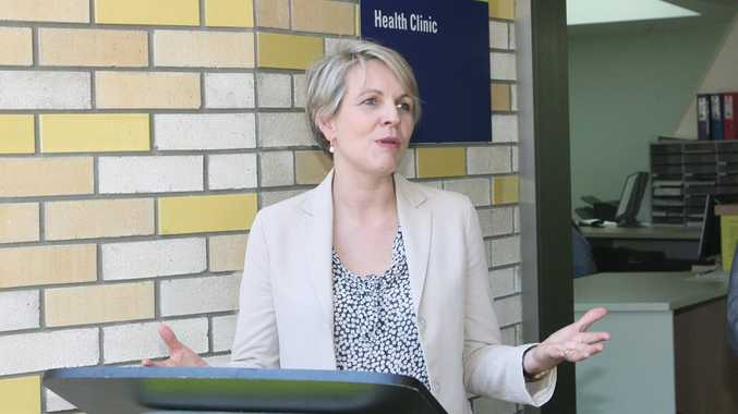 Ms Plibersek said about 1000 remote consultations took place in a year.