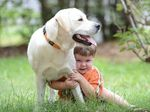Two year old Liam Butler with his dog Murphy. Murphy was found after a reader saw the story in Tuesday's QT.